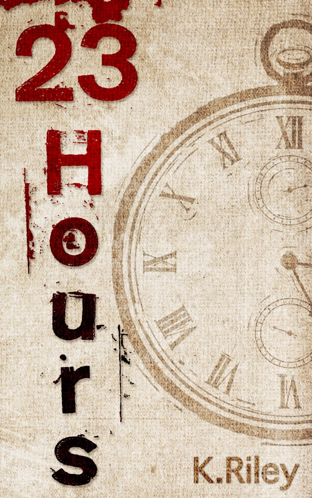 23 Hours Book COver